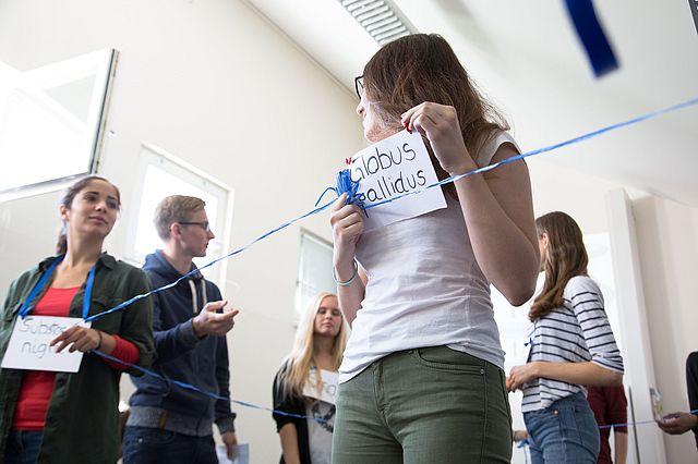 Psychologie studieren in kleinen Seminaren und innovativen Lernformaten