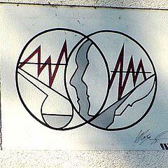IFOM Logo