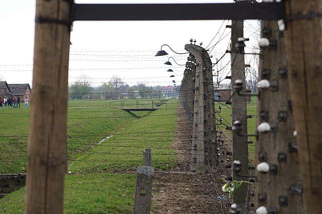 Auschwitz7klein.jpg